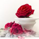 Sublimotion Rose I