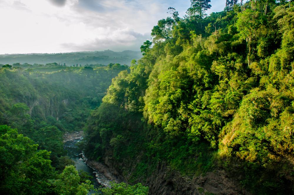 reserve-naturelle-costa-rica